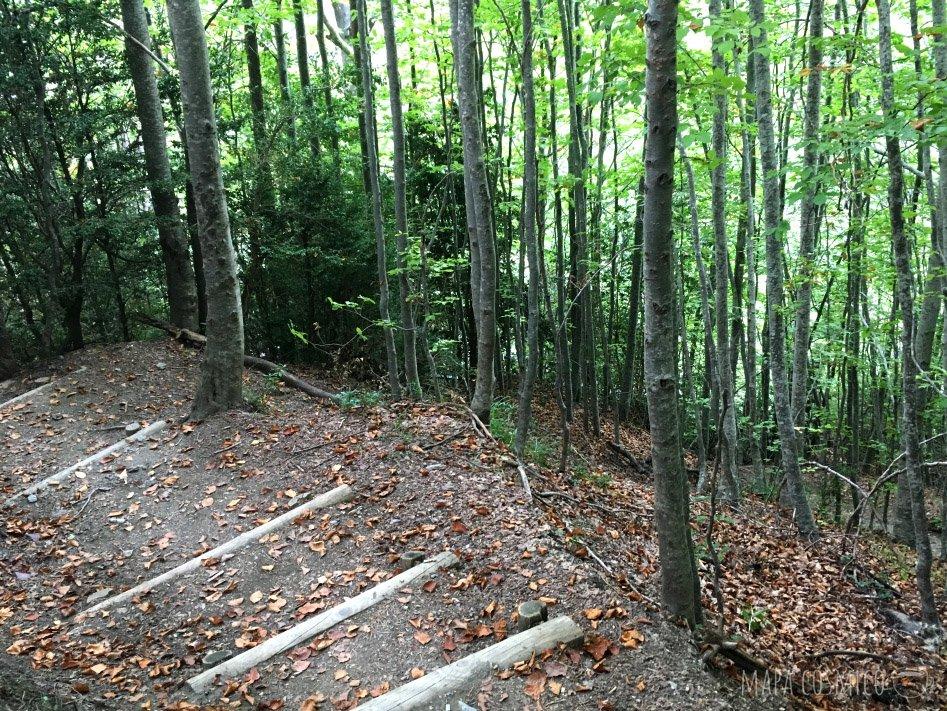 Pineta: El regreso por las escaleras es empinado pero fácil