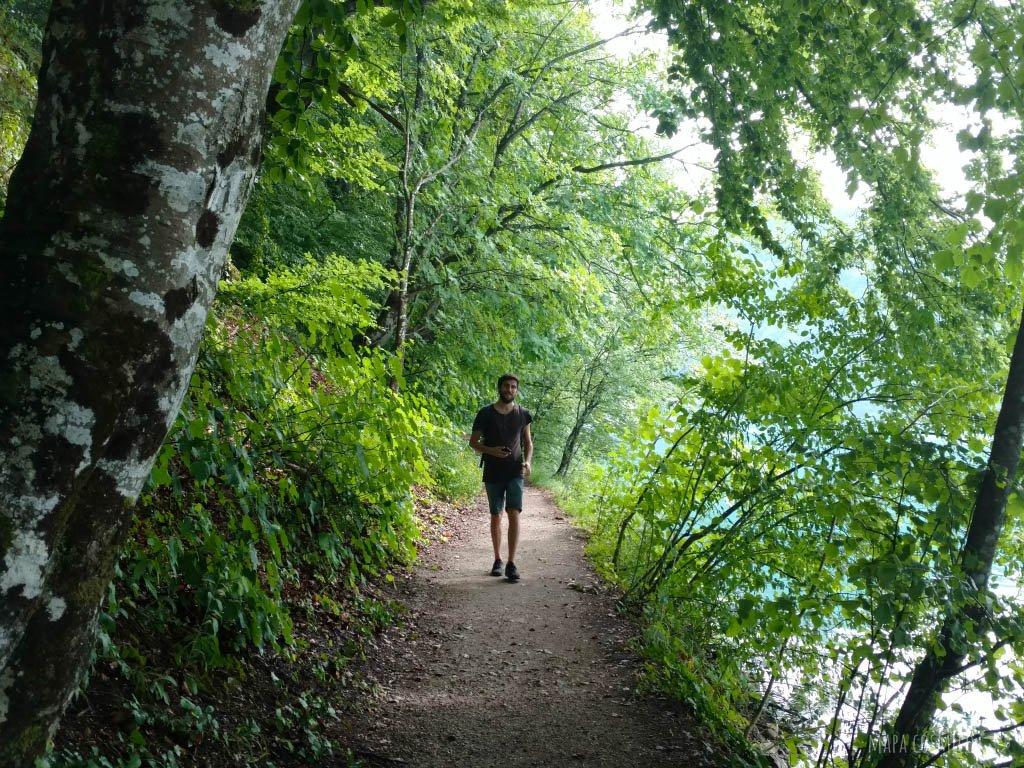 Lagos de Plitvice Croacia, colores verdes, sendero y hombre caminando
